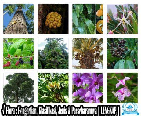 √ Flora : Pengertian, Klasifikasi, Jenis & Persebarannya Lengkap