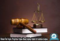 √ Hukum Tata Negara : Pengertian, Tujuan, Ruang Lingkup, Sumber & Contohnya Lengkap