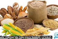 √ Karbohidrat : Pengertian, Sifat, Fungsi, Jenis & Manfaat [ LENGKAP ]