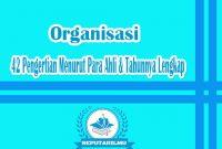 42 Pengertian Organisasi Menurut Para Ahli & Tahunnya Lengkap