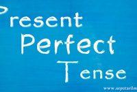 √ Present Perfect Tense : Pengertian, Rumus, Fungsi dan Contoh Terlengkap