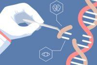 √ Rekayasa Genetika : Pengertian, Manfaat, Jenis, Proses, Keuntungan dan Kekurangan Terlengkap