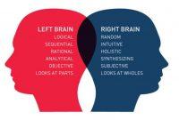 √ Otak Kiri : Pengertian, Fungsi, Struktur dan Cara Kerja Terlengkap
