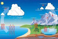 √ Presipitasi : Pengertian, Sejarah, Jenis, Faktor yang Mempengaruhi dan Klasifikasi Terlengkap