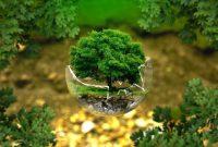 √ Lingkungan Hidup : Pengertian, Manfaat, Faktor Penyebab, Upaya Pelestarian dan Unsur Penyusunnya Terlengkap